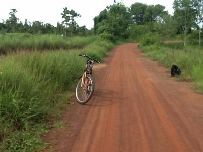 懐かしさが蘇る村の道