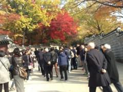 秘苑ピウォン - 朝鮮王朝の庭園。