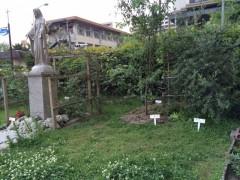白い名札が目を引く庭園。