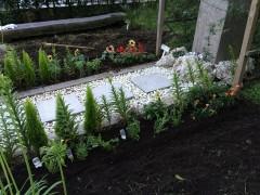 シバ退治を中断してヒマワリその他植栽。