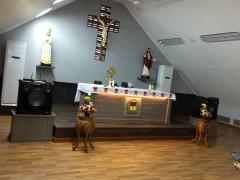 聖堂内部。小教区ではないのでご聖体はない。
