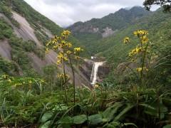 教会近くの名所千尋(せんぴろ)の滝。