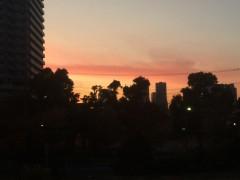 東京でもこんな夕焼けが見たのも新鮮だった。