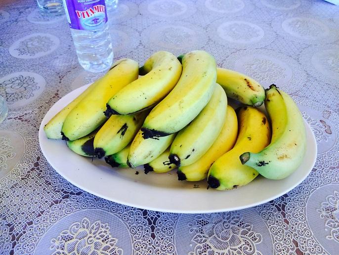 修道院建設予定地でとれたバナナ。
