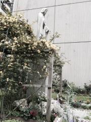 モッコウバラに囲まれた聖書の植物の庭に立つ聖母