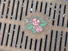 側溝の蓋の花は五島椿。