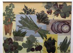 これはみんな本物の乾燥野菜M女史の作品