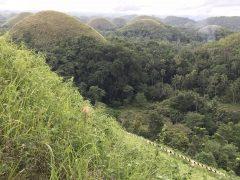 1268個の小さな山々が多くの巡礼者