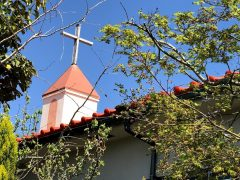 かつての聖堂が園舎となった名物園舎