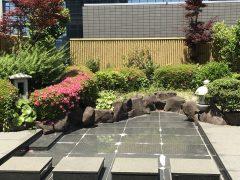 中央協議会聖堂の日本庭園