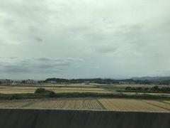 久留米の近くは麦の刈り入れが間近