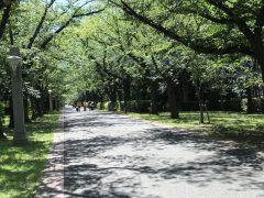 千里の道も一歩から-夢の島公園