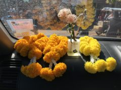 歓迎の花束