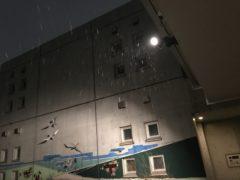 夜になって雪