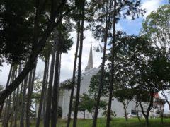 杉木立から見る大聖堂も印象的