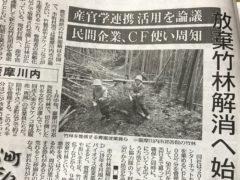 竹林再生は「良し」とされた神の意に沿う