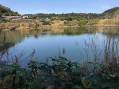 開聞岳を背にした鏡池