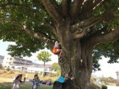 将来のボルダリング女子日本代表