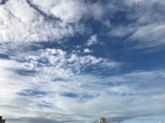 スッキリ涼しげな空でした