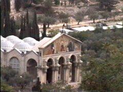 旧市街(城壁の中)から見たゲッセマネの園入り口に建つ教会。